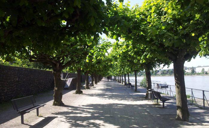 Rheinpromenade Bonn-Beuel