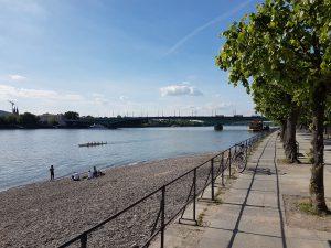 Beueler Rheinufer mit Kenedybrücke und Rhein im Hintergrund