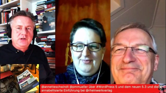 Screenshot Videomitschnitt des Live-Talk zu WordPress 5